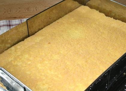 12 biskuitboden blech rezept e