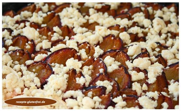 Zwetschgenkuchen Tanjas Glutenfreies Kochbuch